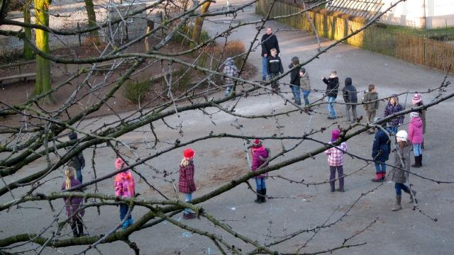Silvesterschule Erle-Umgestaltung