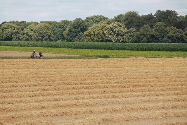 Gemütlich Fahrrad-Tour durch die Erler Felder
