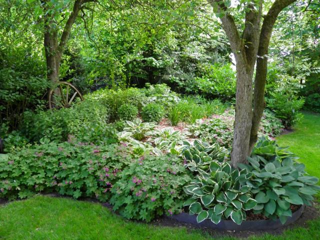 ausgefallene großblattstauden für ein grünes wohnzimmer im freien, Terrassen ideen