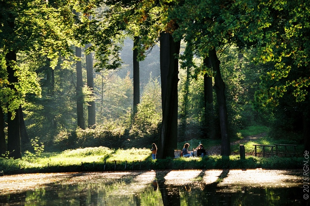 -Foto Baeume im Raesfelder Tiergarten (640x426)