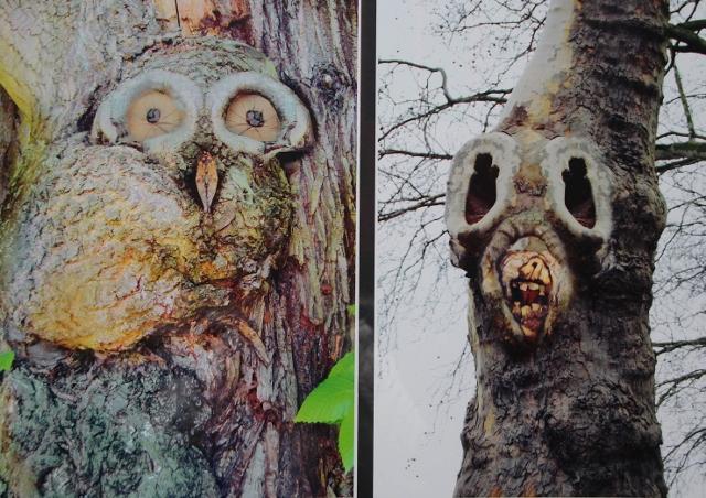 In einem anderen Blickwinkel gesehen und dann digital verändert worden, sind die Kastanienbäume von Karlheinz Strötzel.