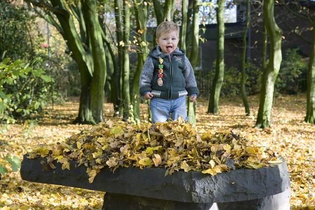 Raesfeld im Herbst©2015RGNFoto (18)