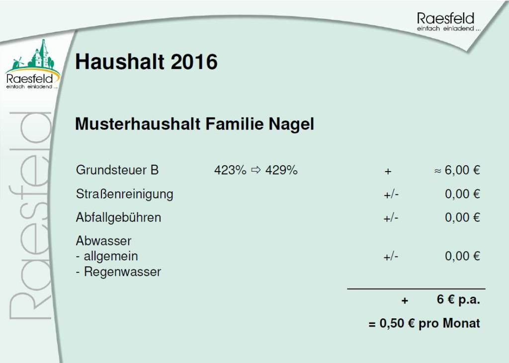 Musterhaushalt Raesfeld 2016