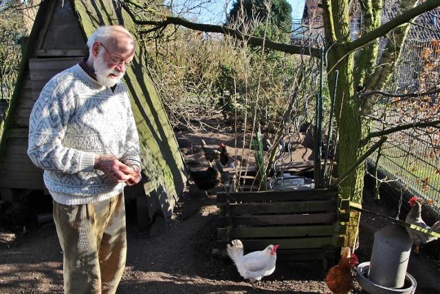 Eier von glücklichen Hühner kann der Hobbygärtner täglich in seinem Garten einsammeln.