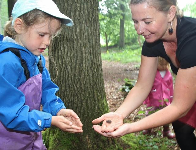 """Den Wald mit allen Sinnen täglich erleben können zukünftig die Kinder ab August 2017 in der neuen Kindergartengruppe """"Waldwurm""""."""