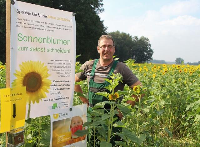 Landwirt Felix Brömmel hat am Lanzenhagen und an der Wesel Weseler Straße Sonnenblumen zum selber schneiden, gegen eine freiwillige Spende, angepflanzt.