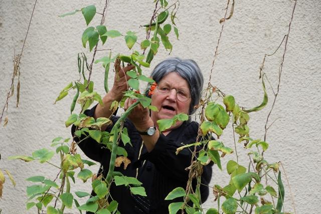 Fräulein Lehrerin Hedwig Rentmeister im Bauerngarten des Heimathauses.