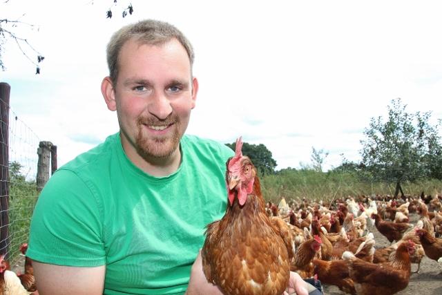 legehühner kaufen ab hof