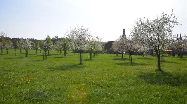Naturpark Raesfeld erleben Schloss Raesfeld