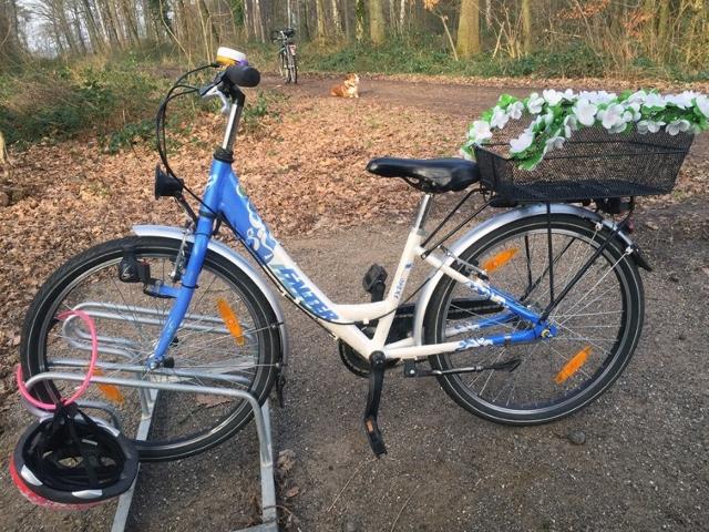 Fahrrad an der Bushaltestelle -Erler Mark-