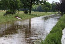 Die Issel - Hochwasser im Juni 2016. Foto: Petra bosse
