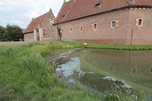 Öl am Teich am Schloss (