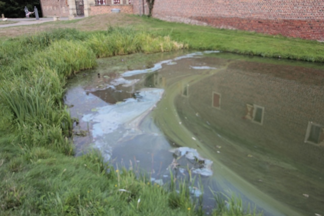 Oel auf Teich in Raesfeld