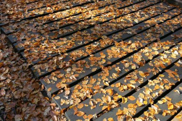 Raesfeld im goldenen Oktober