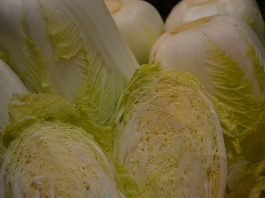 Kappes - Kohl und Chinakohl. Das gesunde Gemüse geht immer