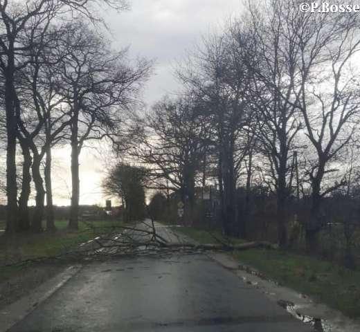 Sturm in Raesfeld März