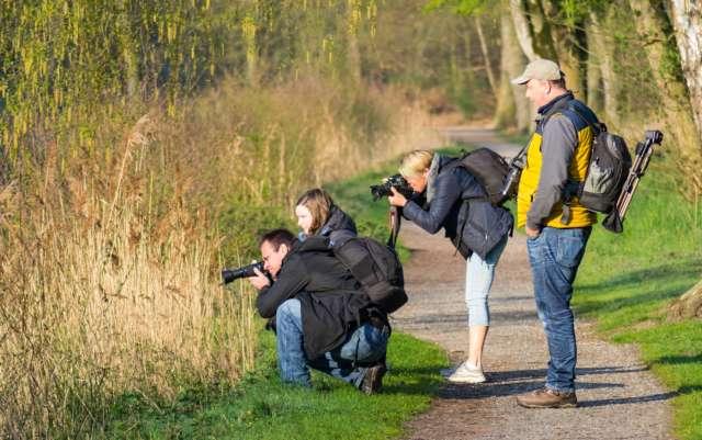 Naturapark Hohe Mark Schloss Raesfeld Tiergarten