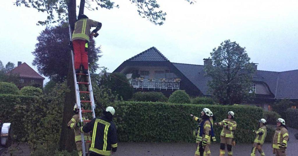 blitzeinschlag Feuerwehr