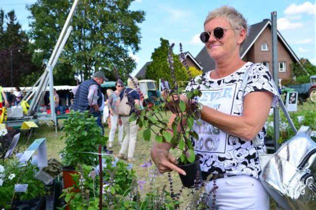 Bauernmarkt Raesfeld Süthold 2019