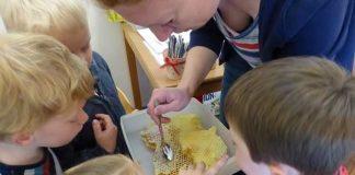 Bienenworkshop im Silvester Kita Erle