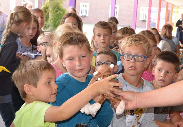 Ferienspiele St. martin Kinderschützenfest 2019