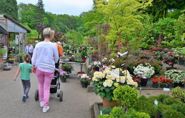 Garten-Wüstemeyer-Schermbeck-Kunst-und-Blumen