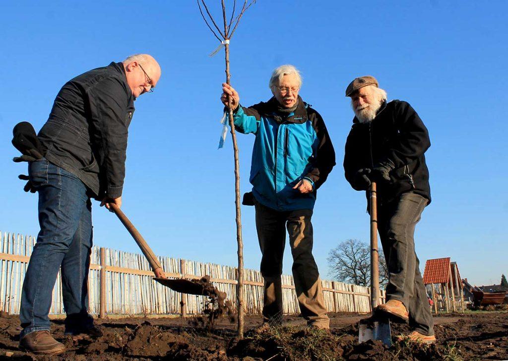 Heimatverein pflanzt neue Bäume