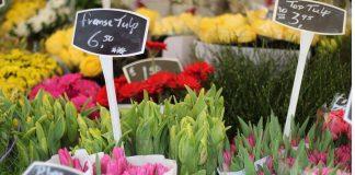 Coronakrise Markt Holland