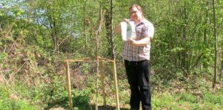 Femeiche Erle steht in Mettman Stadtwald