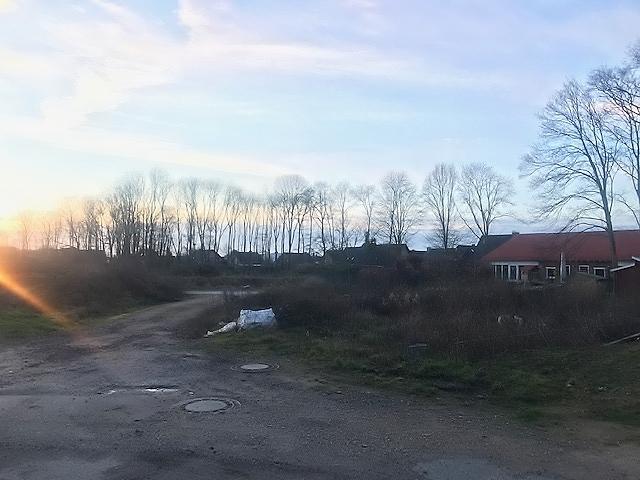 Neubaugebiet Erle