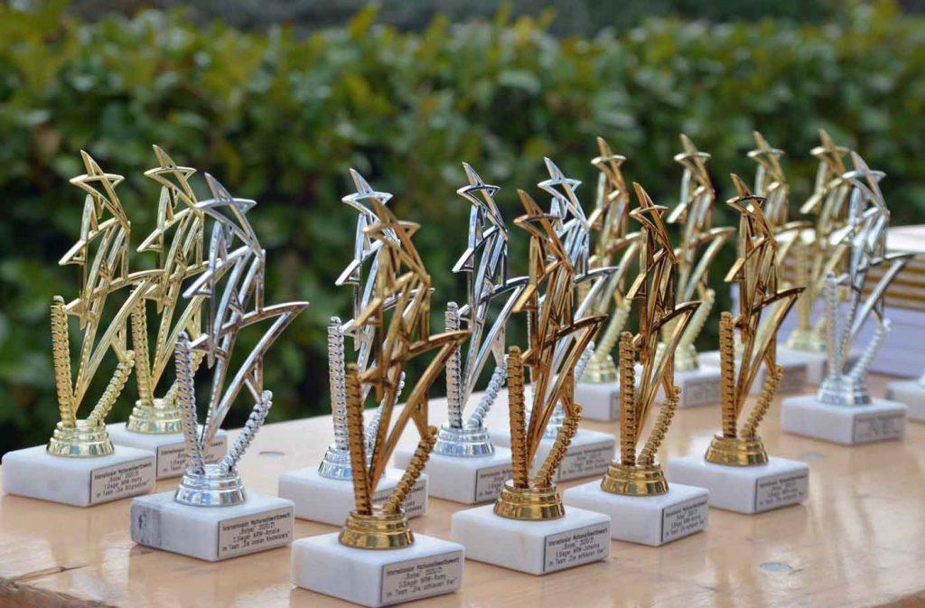 Raesfelder-Schüler-gewinnen-Bolyai-Wettbewerb