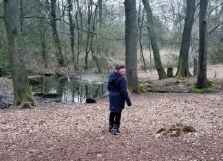 Die-Nutrias-im-tiergarten-sind-los
