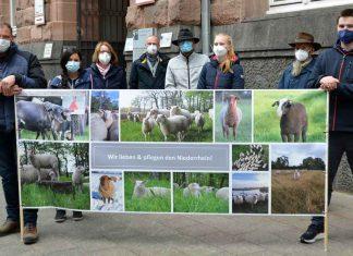 Schafhalter-Bürgerforum-Gahlen-Wolf-Gloria