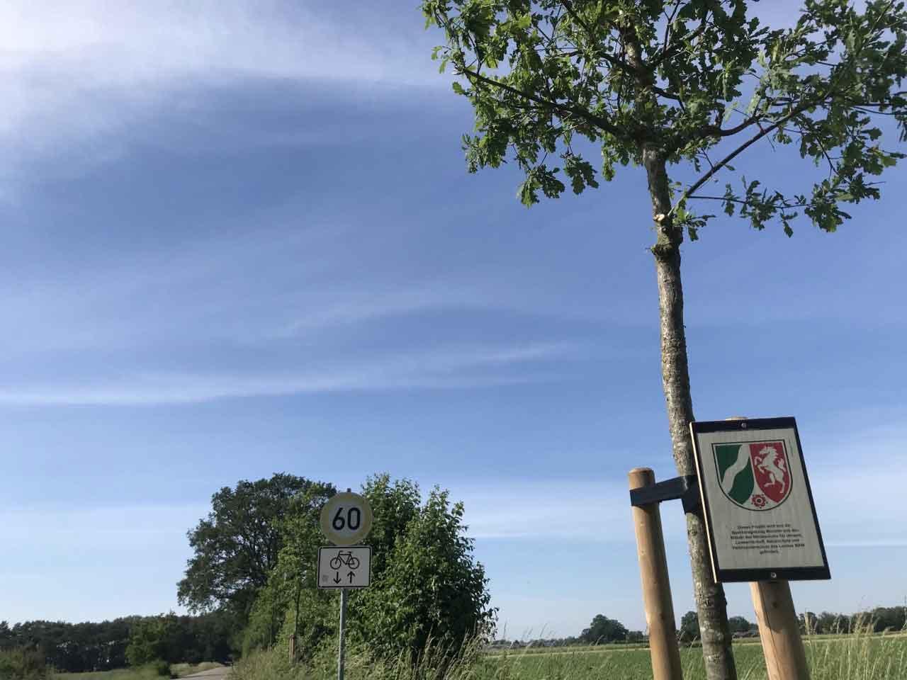Förderprogramm-Bäume-Raesfeld