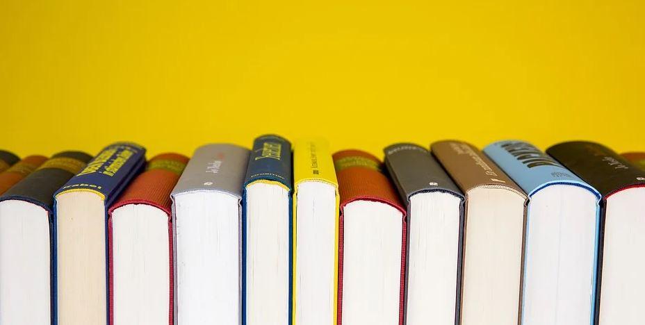Lesewettbewerb Kreis Borken Schüler